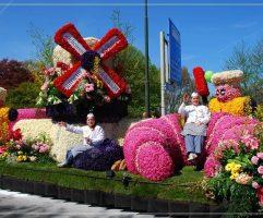 парад-цветов